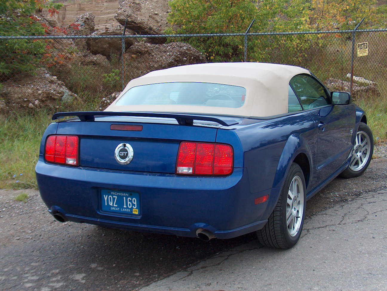 automotive trends 2005 ford mustang convertible. Black Bedroom Furniture Sets. Home Design Ideas